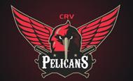 crv_pelicans