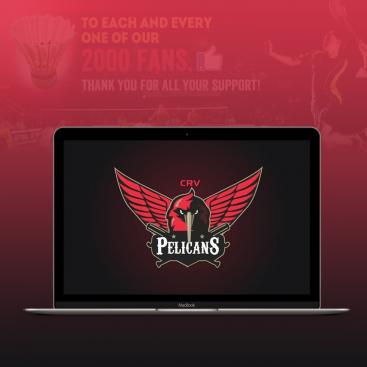 CRV Pelicans Digital Marketing Portfolio