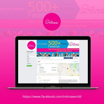 Intima World Digital Marketing Portfolio